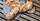 BrotBackKunst - Brotbacken